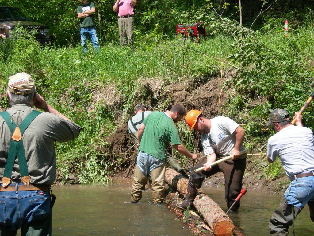 Marsh Creek_Volunteers