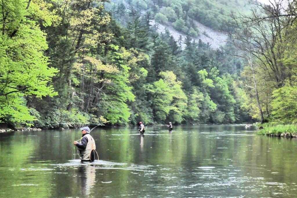Upper Allegheny Watershed Association Press release spring 2017